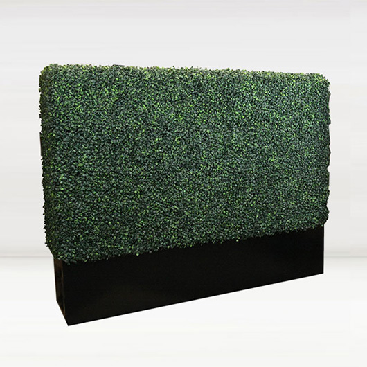 Short Boxwood Wall